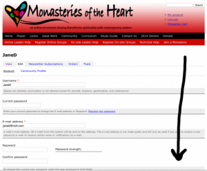 Monasteries of the Heart Community Profile Three